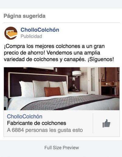 proyecto-chollocolchon-publicidad-online-2