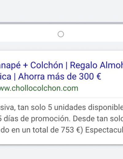 proyecto-chollocolchon-publicidad-online-3