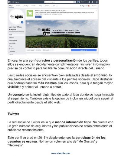 proyecto-morethanwines-redes-sociales-2